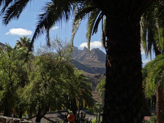 Finca Molino de Agua Hotel Rural Restaurante: vue depuis le jardin de l'hôtel