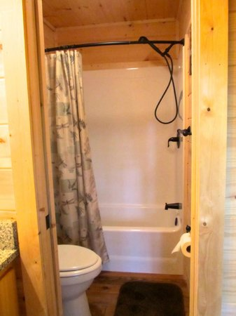 Cabins of Asheville: Bathroom