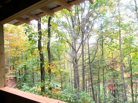 Cabins of Asheville: Balcony view