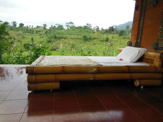 Subak Tabola Villa : terrasse de la chambre