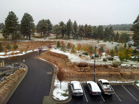 Courtyard Flagstaff: View from Room 319