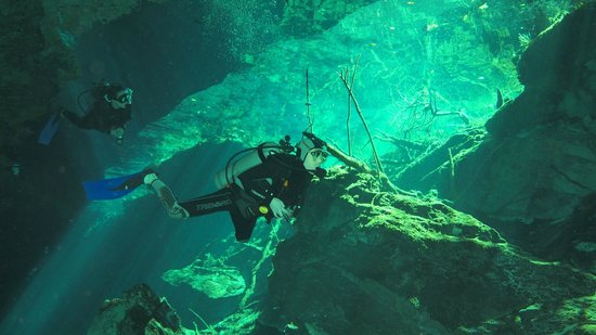 The Scuba Tribe : Gorgeous light in the cenote entrance. The light inside Chaak Mol is even more dramatic.