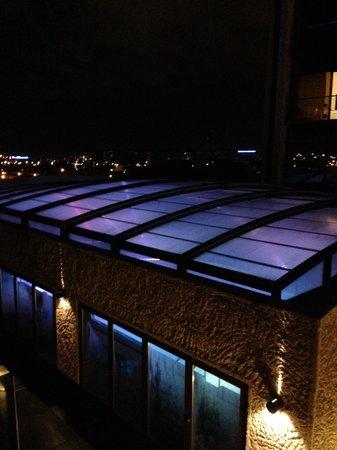 Hilton Madrid Airport : Swimming Pool