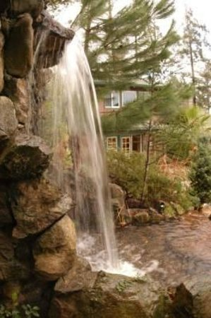 Alexander Valley Lodge : Waterfall