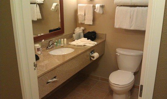 Comfort Suites Sarasota: bath