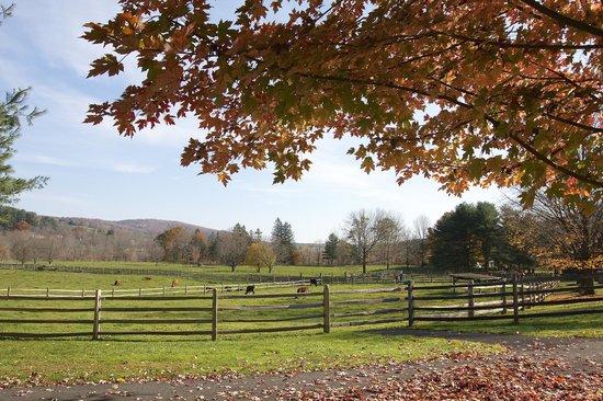 Billings Farm & Museum: beautiful scenery