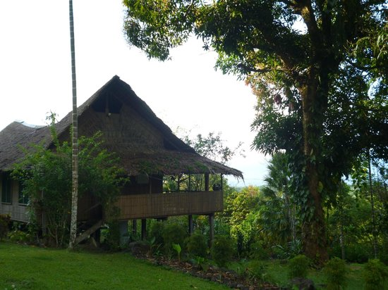 Ulumani Treetops Rainforest Lodge