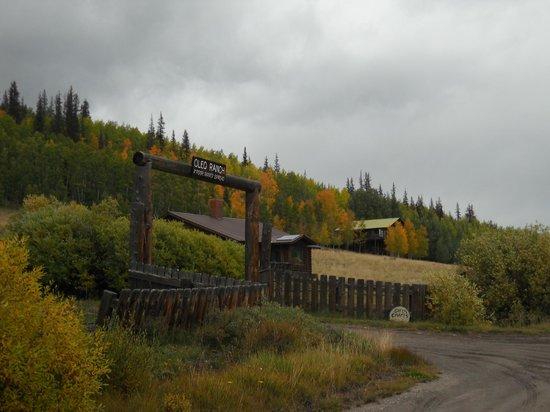 Oleo Ranch: The Ranch