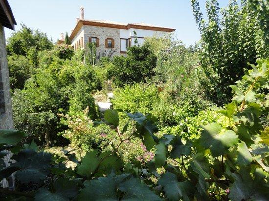 Mehmet Ali Aga Mansion: Bahçe muhteşem...