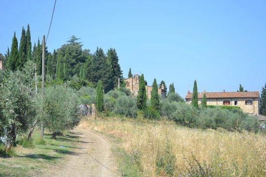 La Canonica di Cortine : magnificant view