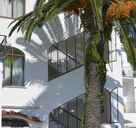 Hotel Costa Citara: Территория отеля