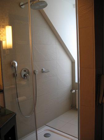 Imperial Riding School Renaissance Vienna Hotel: Shower