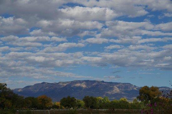Los Poblanos Historic Inn & Organic Farm : Looking East towards Sandia Crest
