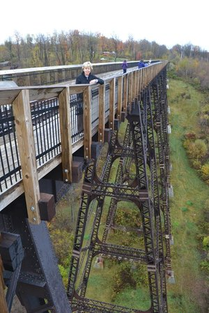 Kinzua Bridge State Park : View from the end of the Skywalk.