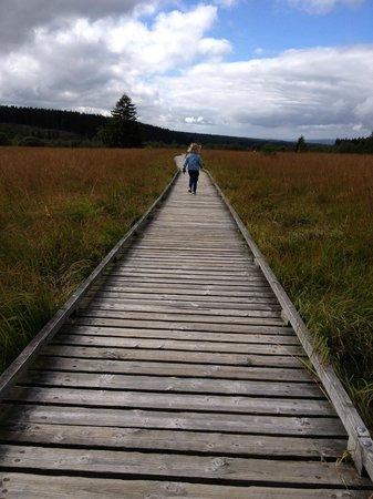 Le Mont Rigi: wandeling
