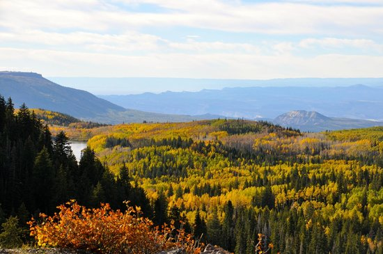 Grand Junction, Kolorado: Grand Mesa