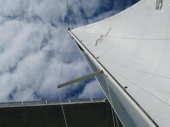 Key Sailing: Going under the Bird Key Bridge
