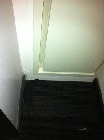 Hotel Valencia - Santana Row: Found a dirty sock in the closet