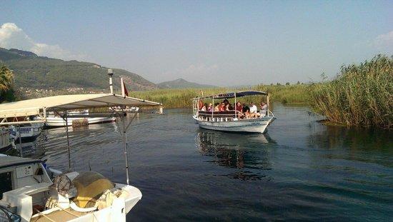 Dalyan River: Boat