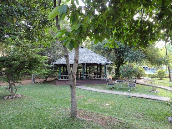 Pelwehera Village Resort: le jardin