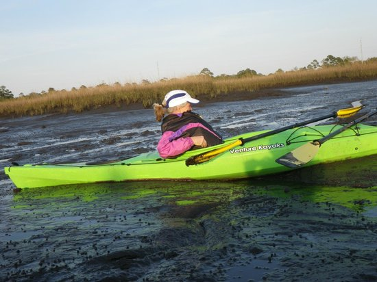 First Coast Outfitters Kayak Tours: Stuck in the Muck with Wife and Kids