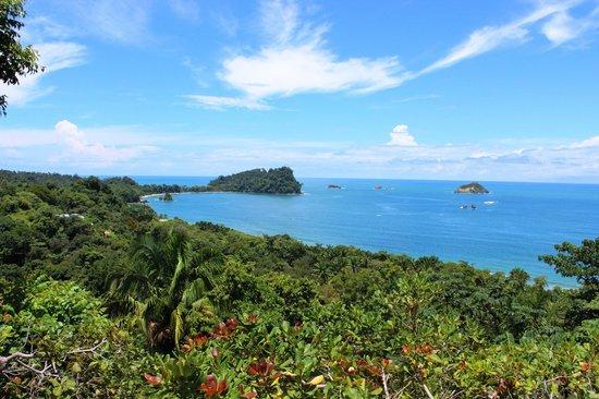 Hotel Costa Verde: room view