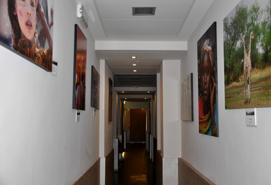 New Morpheus Rooms : Photo exhibition in the corridors