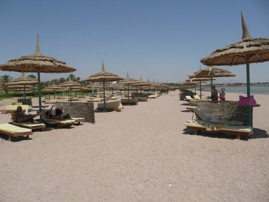 Pasadena Resort: Пляж