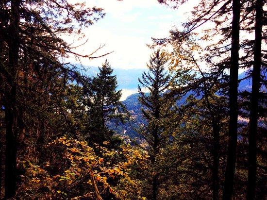 Mountain Trek Fitness Retreat & Health Spa: Beautiful View