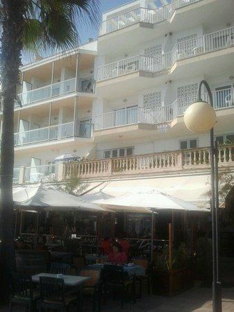 Apartamentos Arcadia