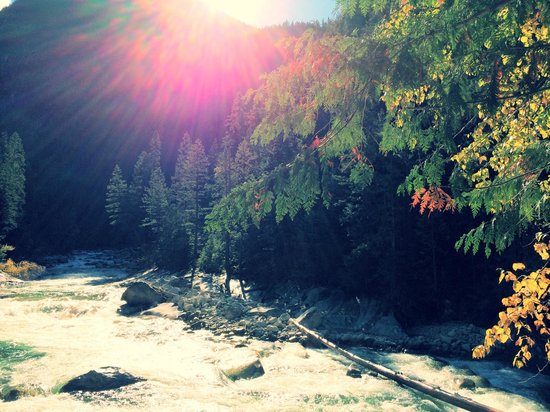 Mountain Trek Fitness Retreat & Health Spa: Gorgeous Fry Creek Hike