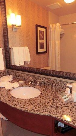 Hilton Garden Inn Twin Falls : 229
