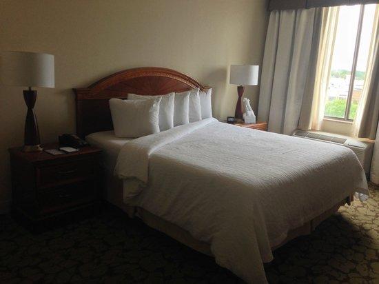 Hilton Garden Inn Virginia Beach Town Center : Master Bedroom (partial view)