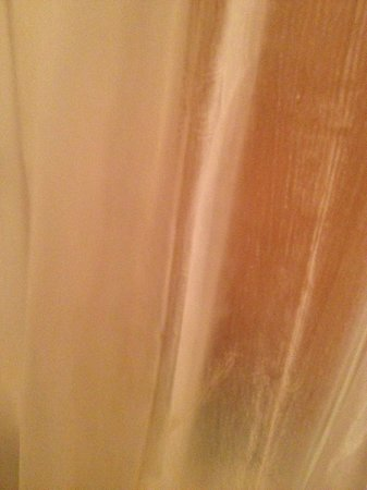 """Lakeview Lodge: the """"clear"""" shower curtain"""