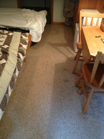 Lakeview Lodge: stains on carpet, holes in comforter