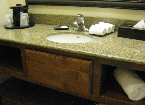 La Quinta Inn & Suites Dallas Love Field : sink area
