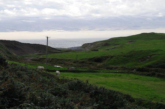 Sea View House Doolin: Sea View