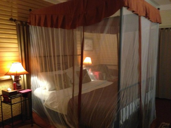 Mount Meru Game Lodge & Sanctuary: The bed