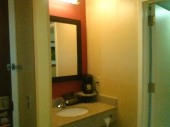 Courtyard Tampa North/I-75 Fletcher: Vanity