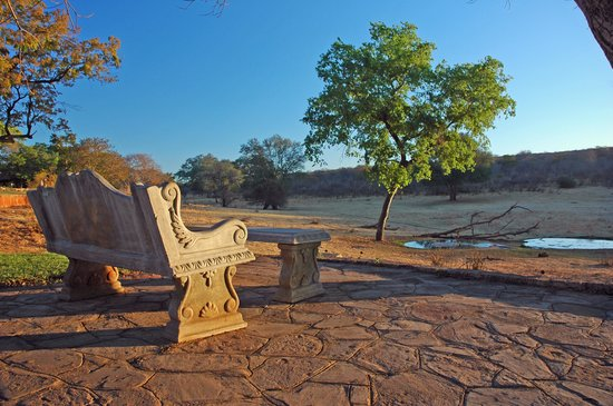 The Stanley and Livingstone: bench with a view of the watering hole