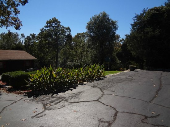 Mockingbird Bay Resort : Plya area and garden