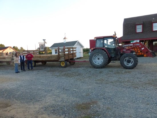 Tractor Pulled Wagon : Coleman s tractor pulled wagon hayride picture of