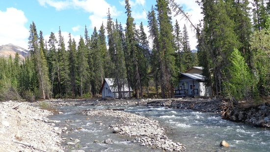 McKinley Creekside Cabins: Some of the Cabins