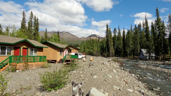 McKinley Creekside Cabins: The cabins and views