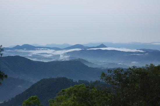 Ambady Estate: More amazing view