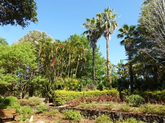 Noosa Botanic Gardens : Noosa Botanic Garden