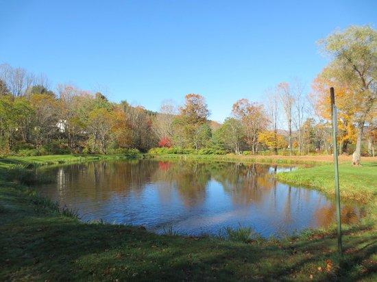 Pond along trail behind RiverWood Inn