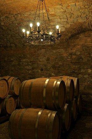 Ruffino - Tenuta di Poggio Casciano: At the wine cellar