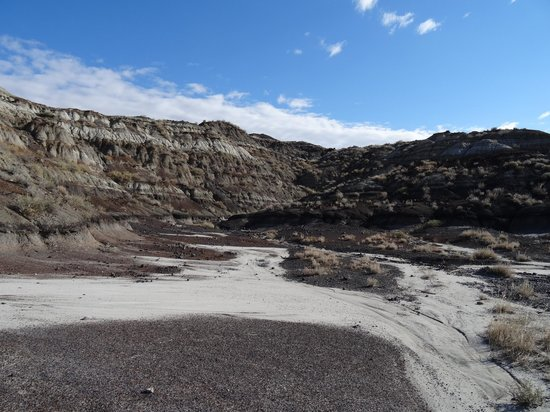 Horsethief Canyon: Lots of fossils to be found.