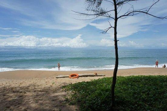 Holiday Inn Phuket Mai Khao Beach Resort: Beach front